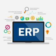 ERP System Development